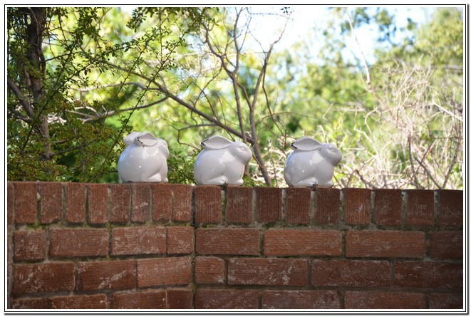 Private_room_6_Dusk_to_Dawn_Guest_House_Burgersdorp_3_ceramic_bunnies
