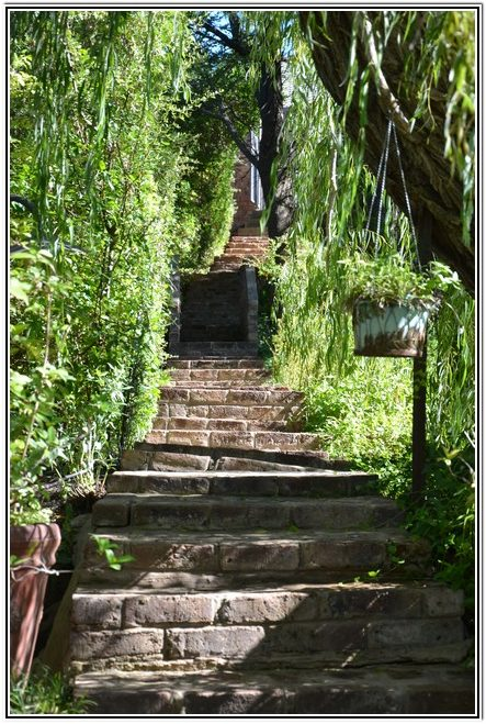 Willow_trees_guiding_your_steps_at_Dusk2Dawn_Guest_House_in_Burgersdorp