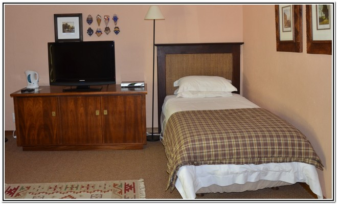 Winter_Garden_En-Suite_Room_4_-_Dusk_to_Dawn_Burgersdorp_Guest_House_single_bed_and_tv_dstv